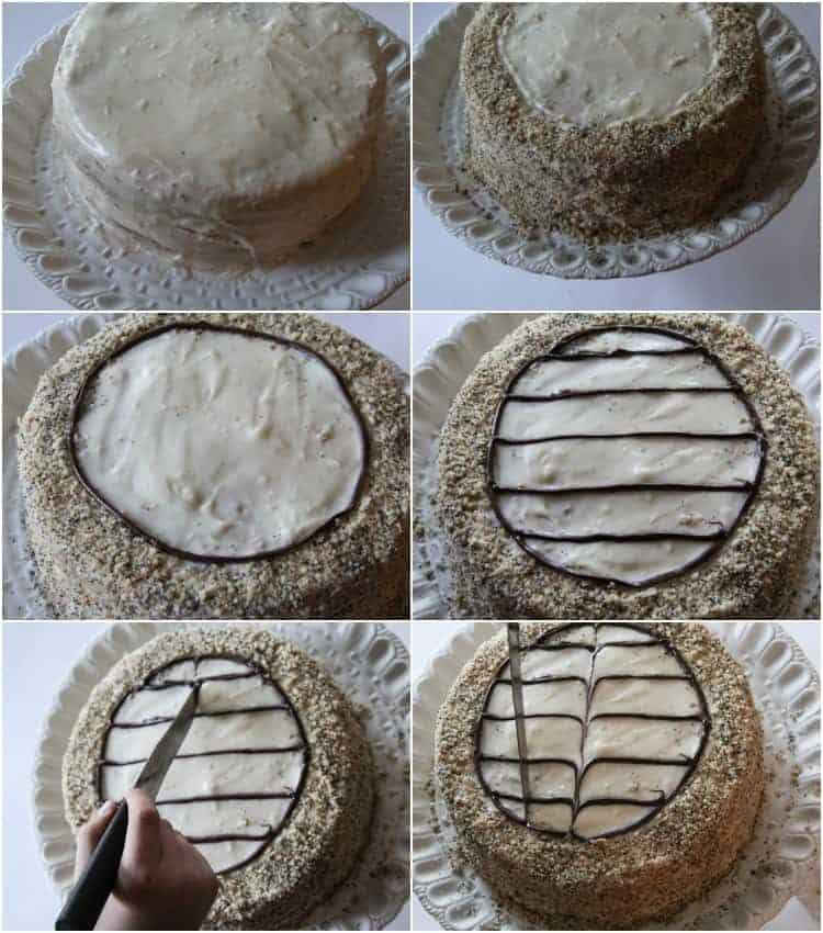 Step by step collage on how to decorate this poppy seed royal delight cake.