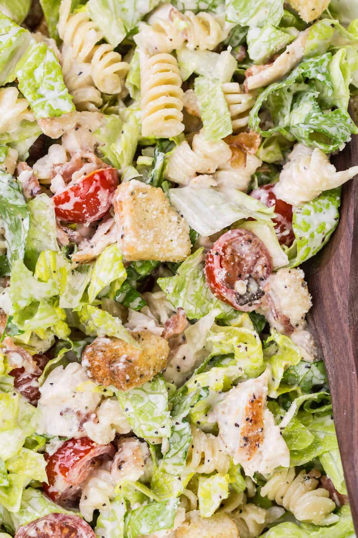 Up close picture of chicken Caesar salad with pasta and tomatoes.