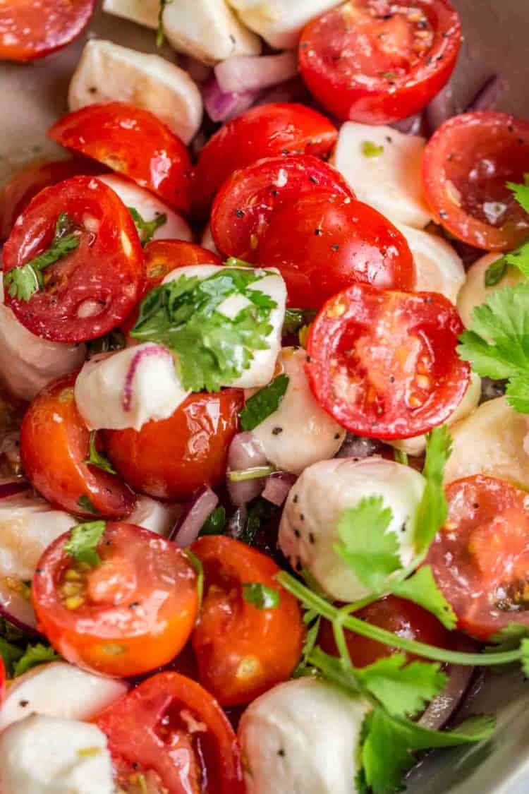 Tomato mozzarella salad with cilantro and red onion.