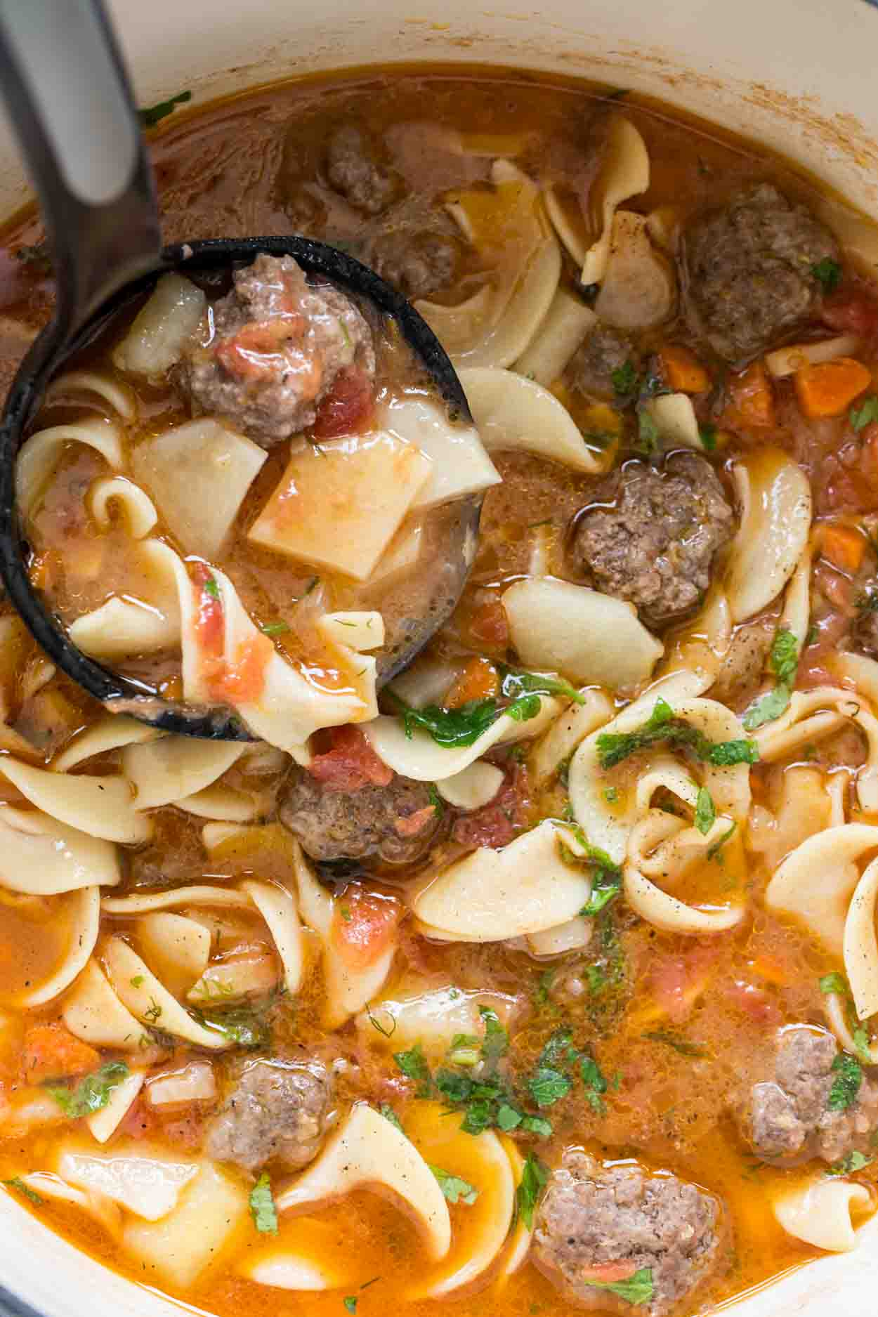 The Meatball Noodle Soup