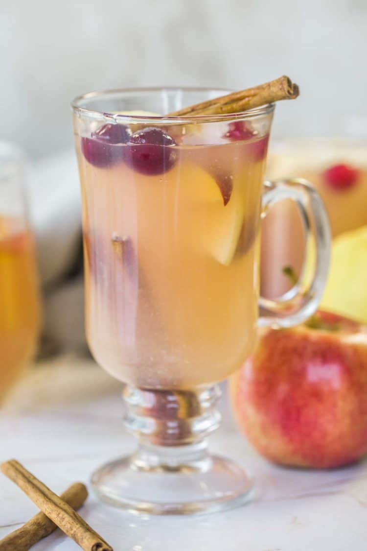 Apple cider in a cup with apples slices and cranberries.
